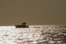 GoldenBoat (1 of 1)