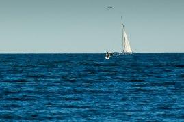 Sailboat2 (1 of 1)