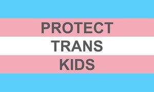 Trans+Flag+Template+JPG